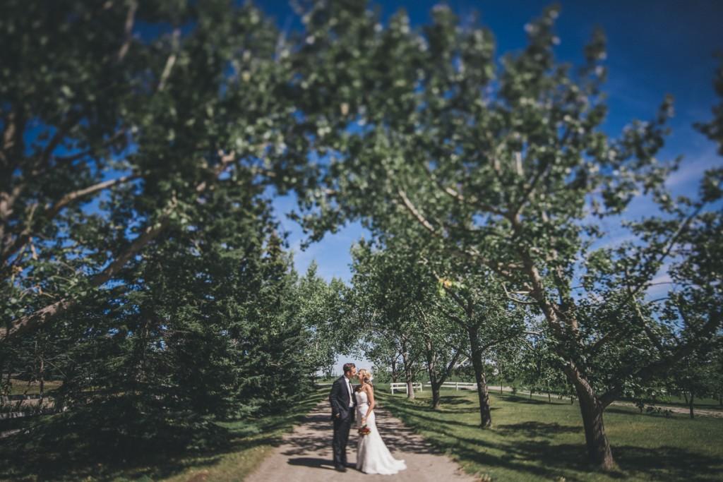 Calgary Wedding photographer, inglewood engagement session, couple photography inglewood, engagement shoot calgary, engagement photography calgary