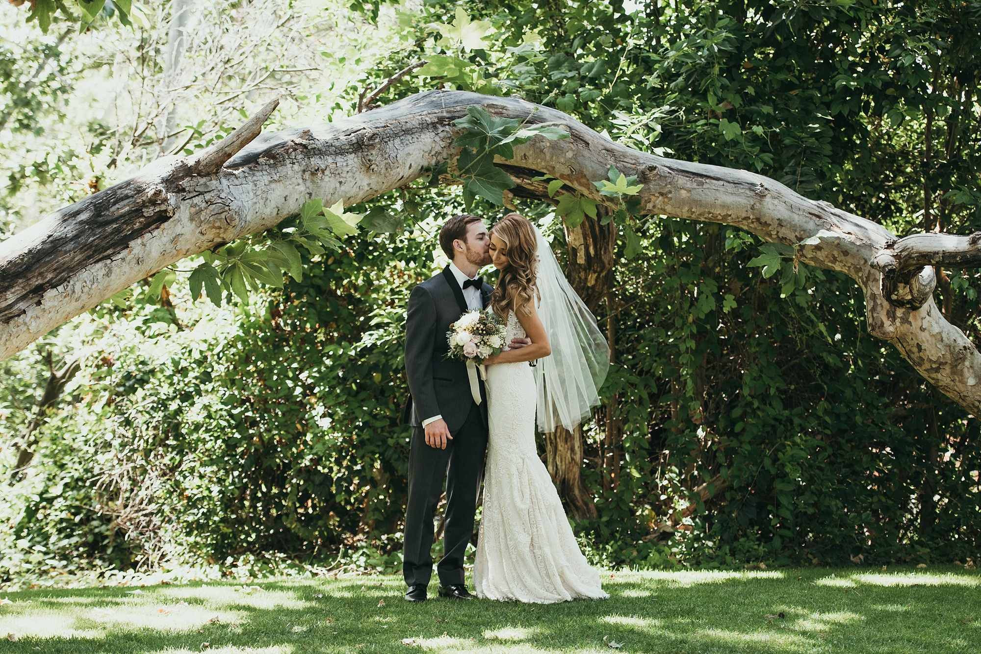 bride and groom standing under beautiful fallen tree in bridal portraits at Temecula creek inn wedding