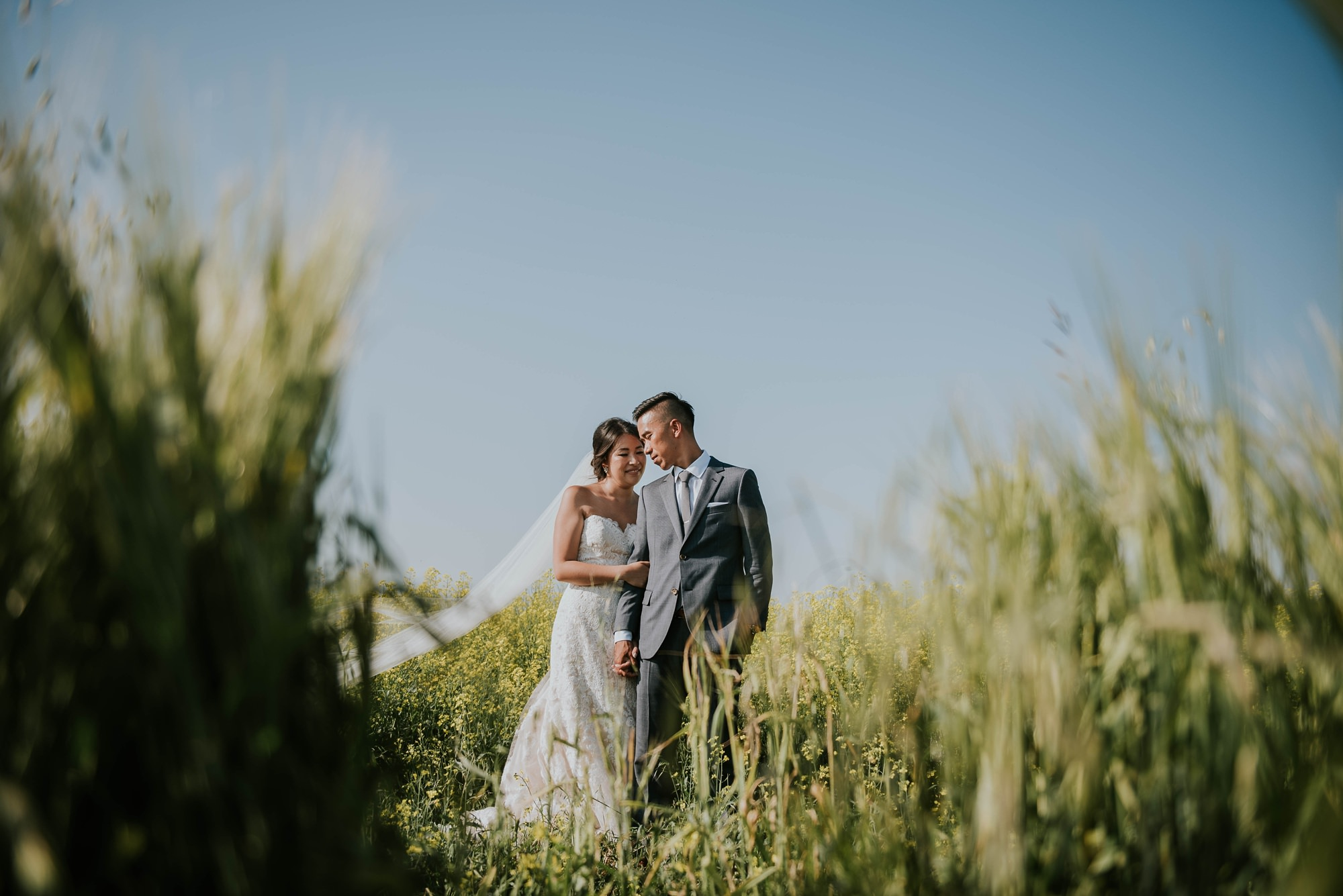 classic and modern barn wedding reception with bride and groom for bridal portraits at willow lane barn wedding in olds alberta
